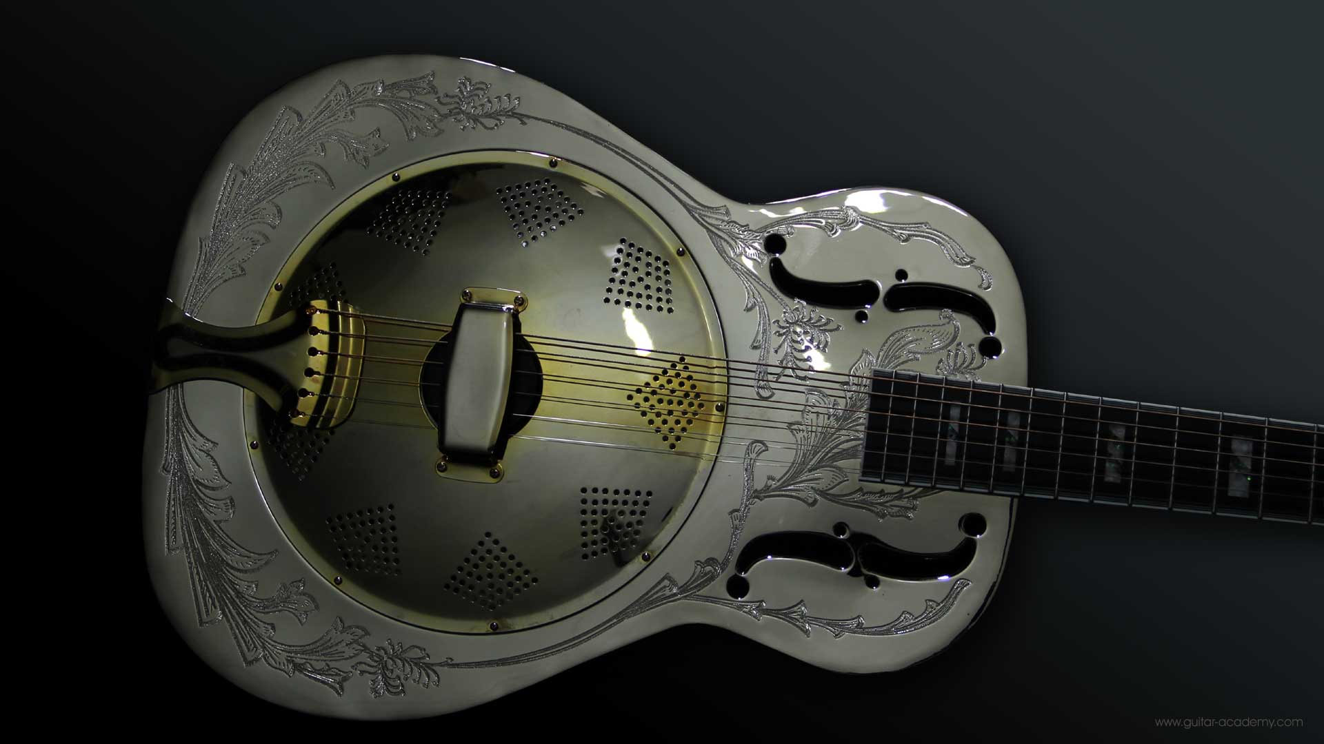 Ozark resonator guitar